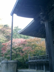 06)鎌倉「妙本寺」